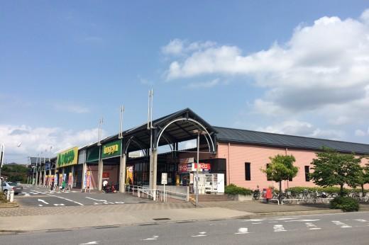 野田みずきショッピングセンター(Ⅰ)
